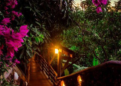 walkway-stone-flowers-sunset-veranda-kep