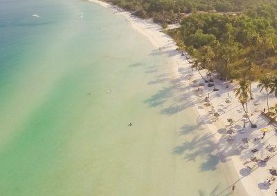 beach-business-ocean-trees-aerial