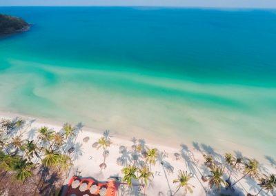 beach-sand-ocean-palm-aerial
