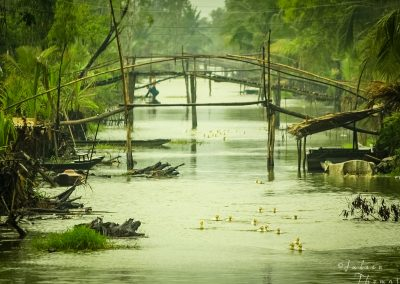 channel-nature-bridge-atmosphere-asia