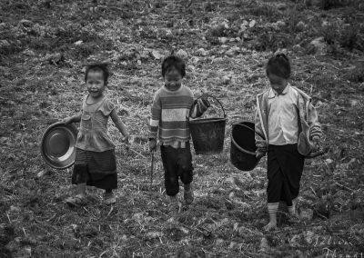 children-countryside-buckets-field