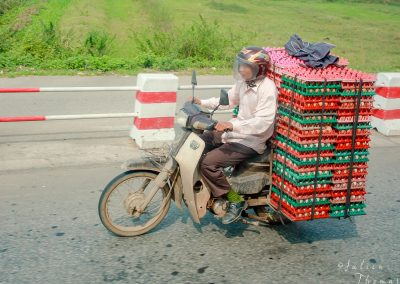 transportion-eggs-motorbike-road-asia